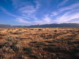 Karoo-South-Africa